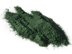La spiruline, l'algue 100% bienfait